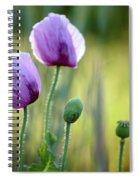 Lilac Poppy Flowers Spiral Notebook