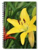 Lilly Spiral Notebook