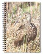 Limpkin Spiral Notebook