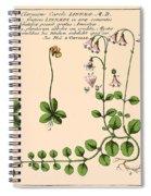 Linnaea Borealis, Linnaeuss Favorite Spiral Notebook