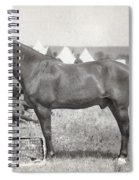 Little Bighorn, 1876 Spiral Notebook