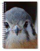 Looking Good Spiral Notebook