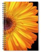 Macro Shot Of Flower Spiral Notebook