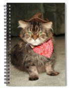 Maine Coon Spiral Notebook