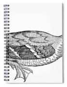 Mallard Duck Spiral Notebook
