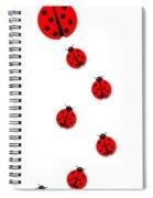 Many Ladybugs Spiral Notebook
