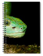Marchs Palm Pitviper Spiral Notebook