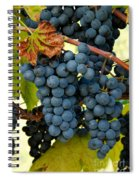 Marechal Foch Grapes Spiral Notebook