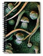 Marijuana, Cannabis Sativa, Sem Spiral Notebook
