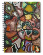 Mindscape Spiral Notebook