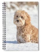 Mini Golden Doodle  Spiral Notebook