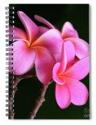 Na Lei Pua Melia Aloha He Ala Nei E Puia Mai Nei Pink Plumeria Spiral Notebook