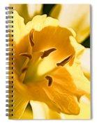 10553 Narcissus Superstar - Flower 080  Spiral Notebook