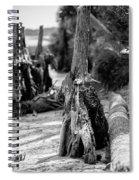 Nature Scenes Around Hunting Island South Carolina Spiral Notebook
