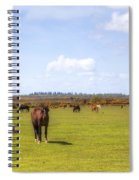 New Forest - Hampshire - Uk Spiral Notebook