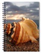 North Shore Seashell Spiral Notebook