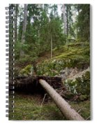 Old Forest In Kauppi Tampere Spiral Notebook