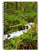 Olympic Tranquility Spiral Notebook