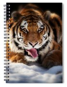 Open Wide Spiral Notebook