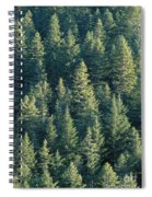 Oregon, Cascade Mountain Spiral Notebook