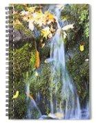 Oregon Cascades, Oregon, Usa Spiral Notebook