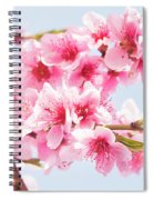 Peach Flowers Spiral Notebook
