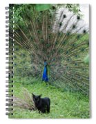 2 Peacocks And A Black Pussy Cat Spiral Notebook