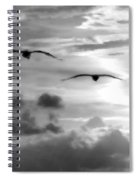 2 Pelicans Flying Into The Clouds Spiral Notebook