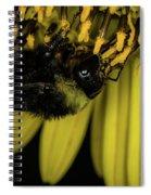 Pollen Collector 3 Spiral Notebook