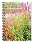 Pond In The Bershire Mountains, Massachusetts Spiral Notebook