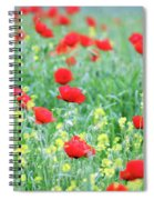 Poppy Flowers Meadow Spring Season Spiral Notebook