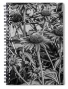 Purple Blooms Spiral Notebook