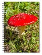 Red And White Potted Toadstool Spiral Notebook