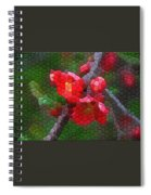 Red Quince Spiral Notebook