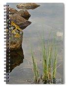 Rockery Spiral Notebook