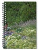 Roe Deer Spiral Notebook