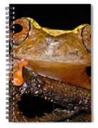 Ross Allens Treefrog Spiral Notebook