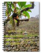 Ruins Of  Machu Picchu Spiral Notebook