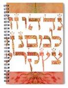 Hebrew Alphabet Spiral Notebook