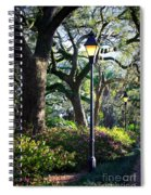 Savannah Spring Perspective Spiral Notebook