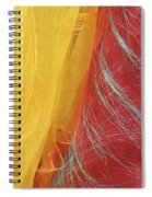 2 Scarves Spiral Notebook