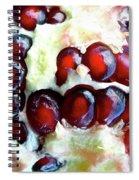 Seul Spiral Notebook