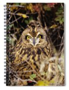 Short-eared Owl Spiral Notebook