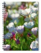 Showy Evening Primrose Spiral Notebook