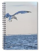 Jbhartgallery Spiral Notebook