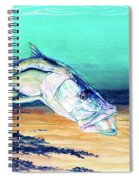 Snook On Jig Spiral Notebook