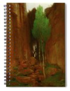 Spring In A Narrow Gorge  Spiral Notebook