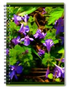 Spring Time Series Spiral Notebook