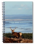 Stag Overlooking The Beauly Firth And Inverness Spiral Notebook
