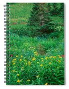 Stream And Alpine Flowers, Ouray Spiral Notebook